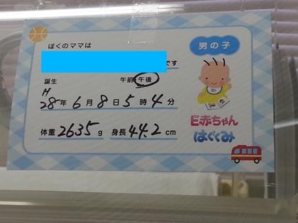 20160608_172508.jpg