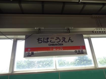 DSC01923.JPG