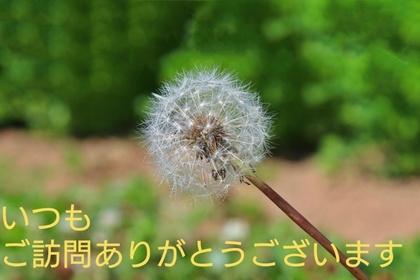 _20171124_124721.JPG