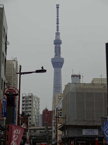 190310_asakusa9.JPG